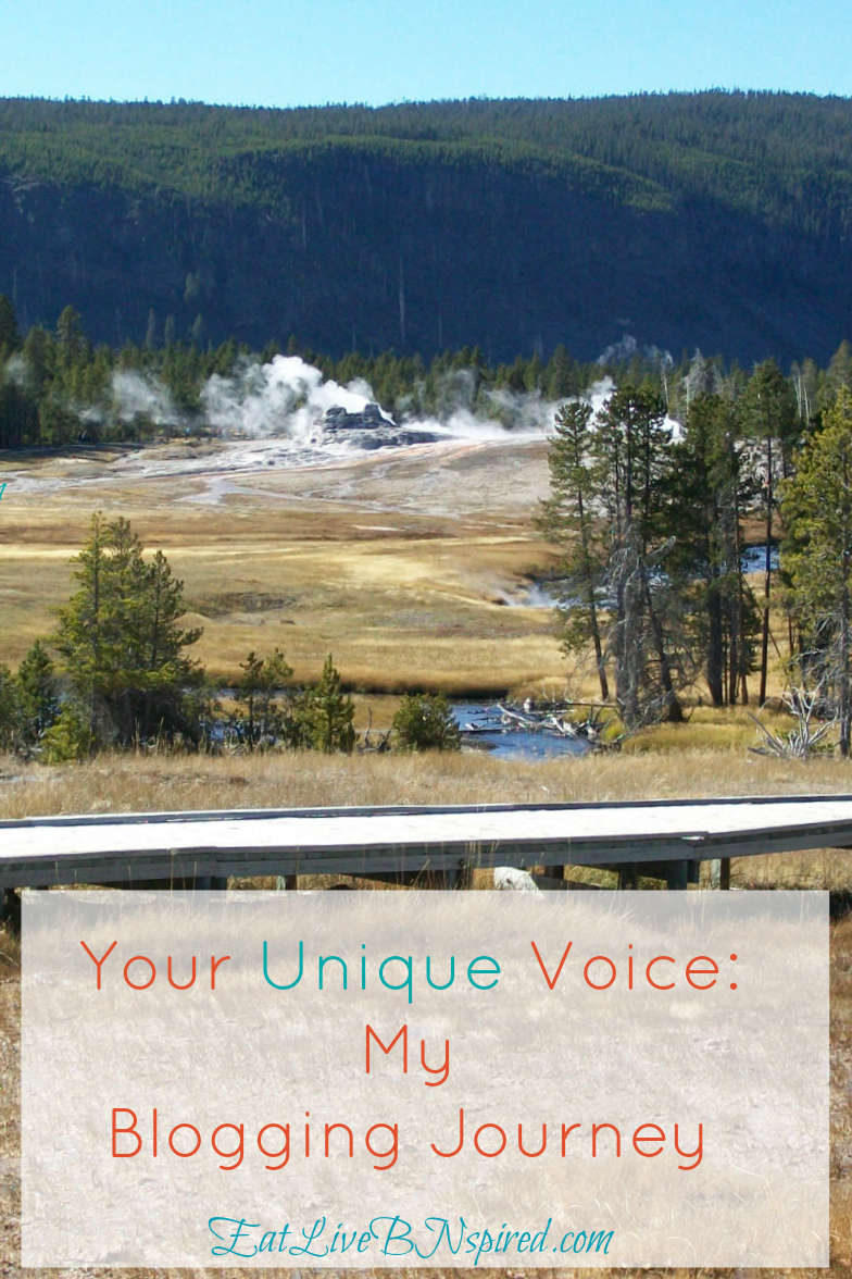 your-unique-voice-my-blogging-journey-my-story